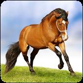 Horse puzzle game