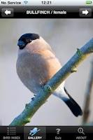 Screenshot of BirdsUK