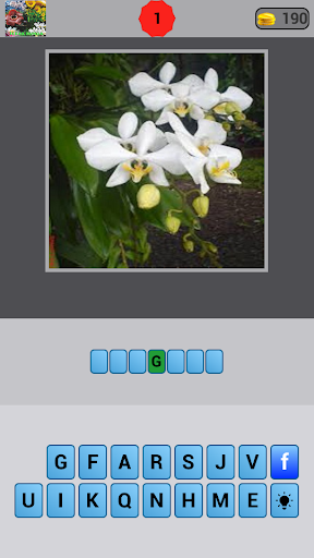 Tebak Nama Bunga Indonesia