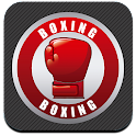 Boxing Fight Game icon
