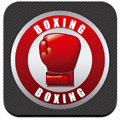 Boxing Fight Game
