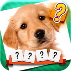 Word and Picture Quiz icon
