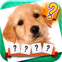 Word and Picture Quiz 1.0.2