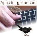Blackbird for Guitar