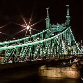 Liberty Bridge by night by Sebastièn Petri - Buildings & Architecture Bridges & Suspended Structures ( liberty, hungary, enlightened, budapest, night, historical, bridge )