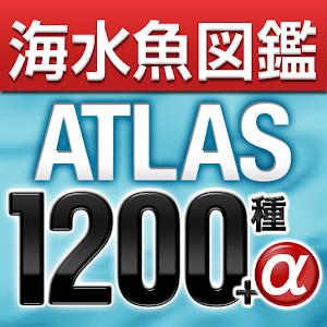 アクアリウムの海水魚図鑑 ATLAS 1200種+α