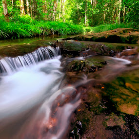 Mini Waterfall  by Andi Setiawan - Landscapes Forests
