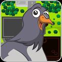 Traffic Pigeon Racer icon