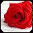 Romantic Pictures for Whatsapp 2.0 Apk