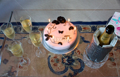 Birthday Cake And Champagne By Venetia Featherstone Witty