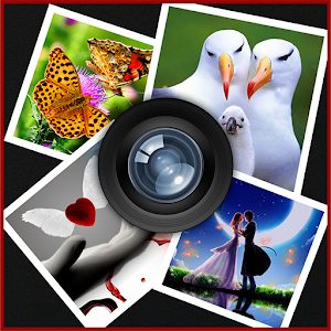 Photo Collage for PC and MAC