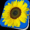 Sunflower Live Wallpaper Free icon