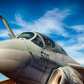 Prowler by Robb Harper - Transportation Airplanes ( hdr, ea-6b, photos by robb harper, prowler, static plane )