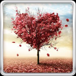 Hösten Kärlek Bakgrundsbilder APK