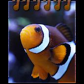 Nativnux Aquarium Logger