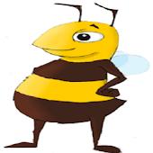 Identify Irish Bumblebees