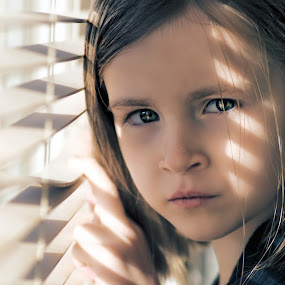 Spying through the Blinds by Steve Brookes - Babies & Children Child Portraits (  )