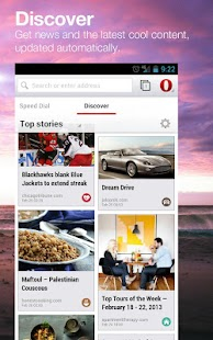 Opera browser beta Screenshot 12