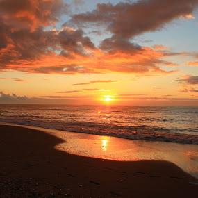 by Crissy Barnes Blanton - Landscapes Sunsets & Sunrises ( beach, landscape )