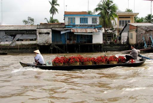 market-Vietnam - A pretty long boat carrying its load of rambutan around the floating market of Cái Bè, Vietnam.