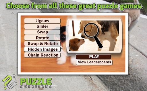 Beagle Dog Puzzle Games