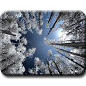 Infrared photography icon