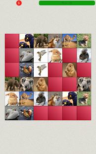 Animals Matching Game- screenshot thumbnail