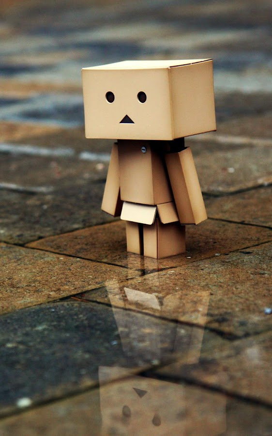 Danbo Live Wallpaper Android Apps on Google Play