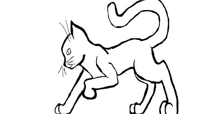 free cat template drawings sketchport