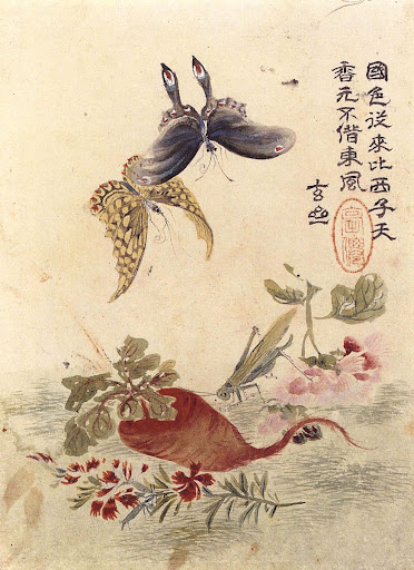 Flowers, Radish, a Grasshopper, and Butterflies