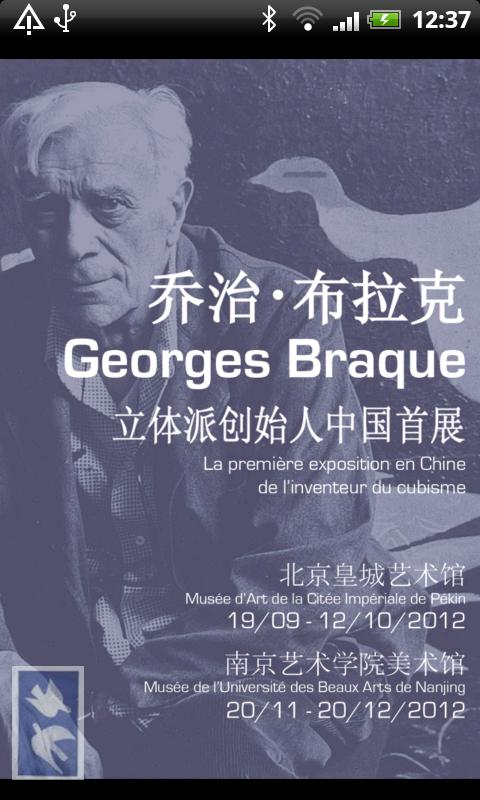 expo-Braque - screenshot