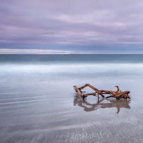 by Ricardo  Guimaraes - Landscapes Waterscapes ( smooth, nature,  )