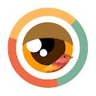 Observa icon