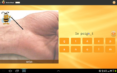 Learn French 6,000 Words- screenshot thumbnail