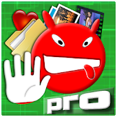 HAYS - Data Protection Pro