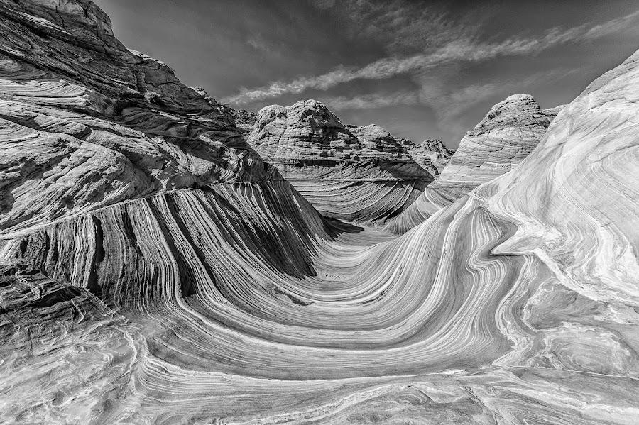 by Brent Clark - Black & White Landscapes ( desert, b&w, the wave, sandstone, landscape )