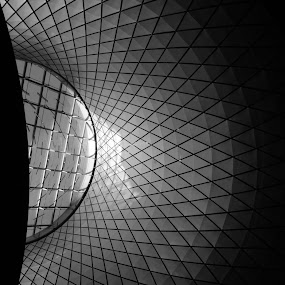 Fulton Street Subway Station by VAM Photography - Black & White Buildings & Architecture ( buldings, b&w, interiors, skylight, architecture,  )