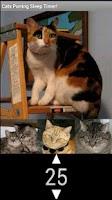 Screenshot of The Best Cat Purring Sound App