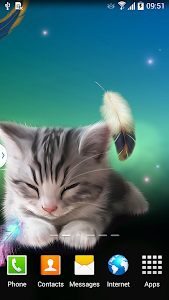 Sleepy Kitten Live Wallpaper v1.0.2