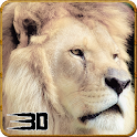 Angry Lion Wild Attack Sim 3D icon