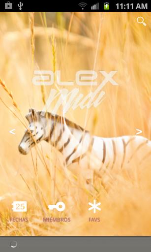 Alex Midi