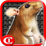 Sewer Rat Run! 3D 2.4 Apk