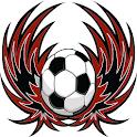 Western Sydney Wanderers Fan