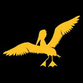 Pensacola Pelican Drop
