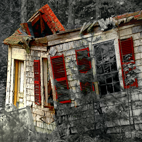 Decay With Red by Robin Amaral - Buildings & Architecture Decaying & Abandoned ( doorway, black and white, shingles, windows, paint, house, roof, fence, red, cottage, trees, shutters, rotting, decay,  )