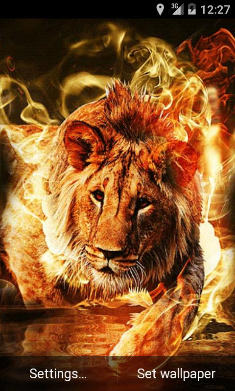 Fire Lion Live Wallpaper- screenshot