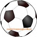 Southampton FC Ad Free logo