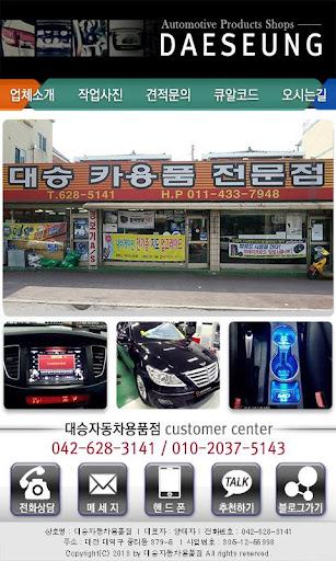 대승자동차용품점