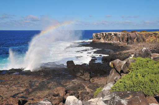 Espanola_Island_Galapagos - Breathtaking sights await on your journey to Española Island in the Galapagos.