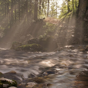 Mist above the stream by Jože Borišek - Landscapes Weather ( slovenia (bohinj) )